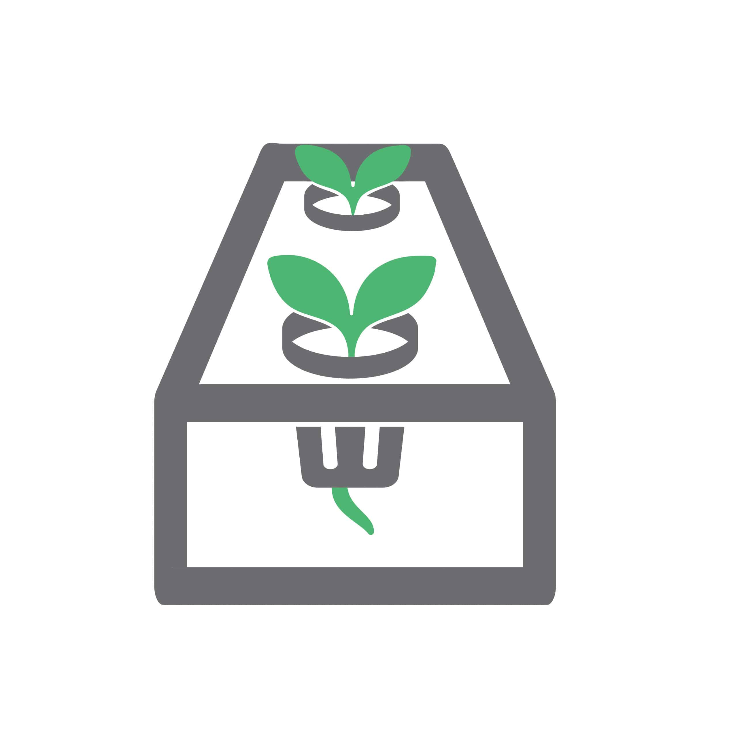 NFT Icon